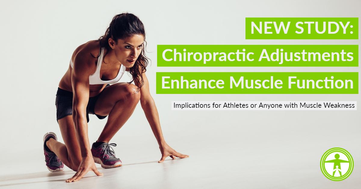 Chiropractic Adjustments Enhance Muscle Function