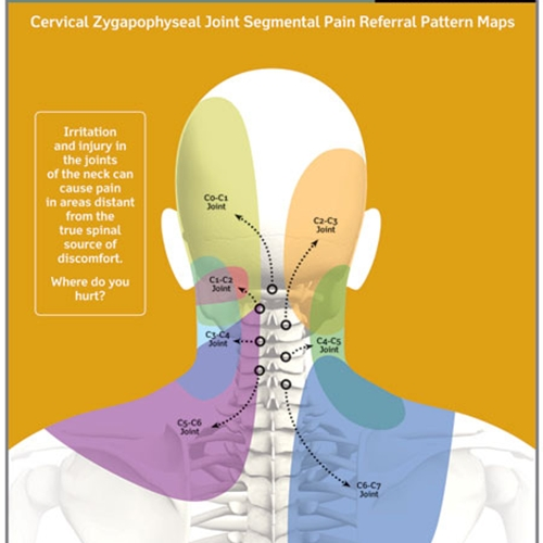 HCG Symptoms additionally Spinal Nerve Chart further Dry Eye Care likewise Frontotemporal Dementia Symptoms Stages Treatment And Life Expectancy further Signs And Symptoms. on brain degeneration signs