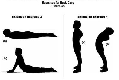 back extension chiropractor austin