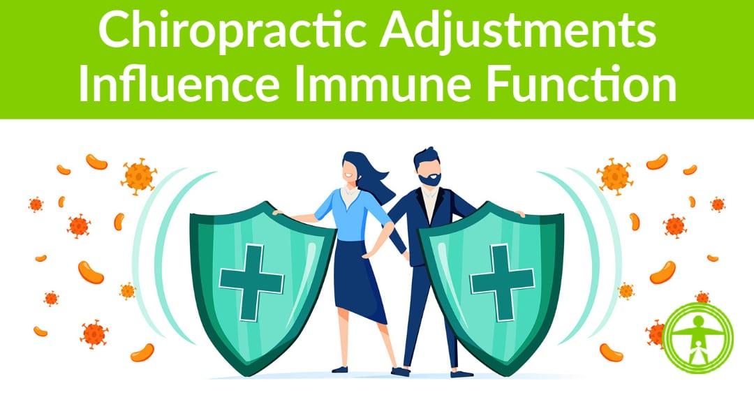 chiropractic adjustments immune function