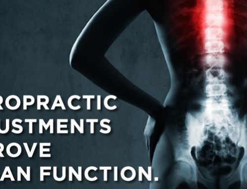 Chiropractic Adjustments Improve Organ Function
