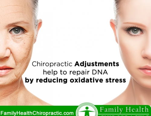 Chiropractic Adjustments can act as antioxidants that repair DNA