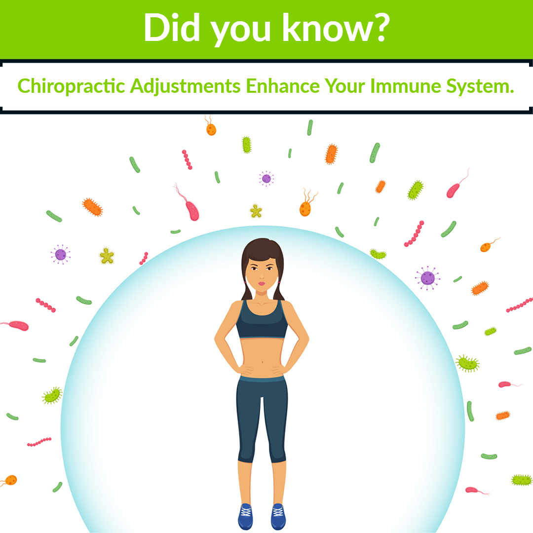 chiropractic adjustments boost immunity