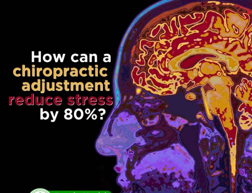 Chiropractic Adjustments Reduce Stress Markers by 80%