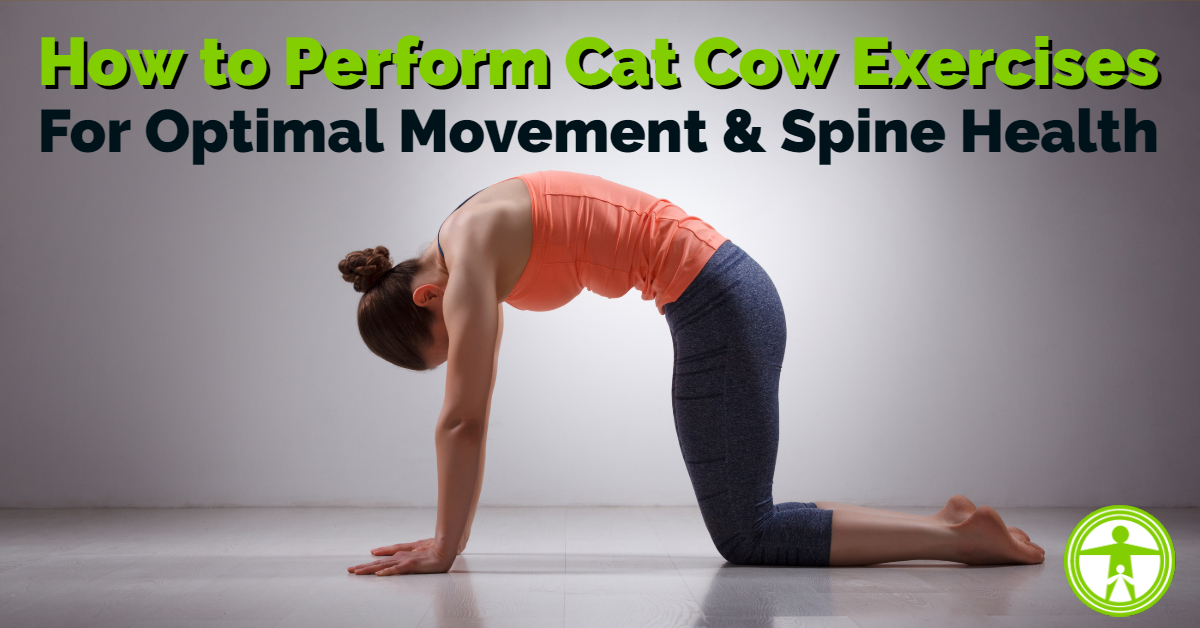 Cat Cow Progressions For Optimal Spine Health